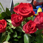 27_08_14 Realschule Wolbeck Rosen