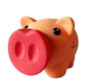 Unser Energiesparschwein Hinnerk