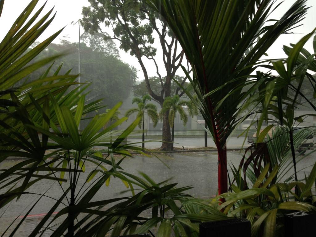 bild-monsunregen-1