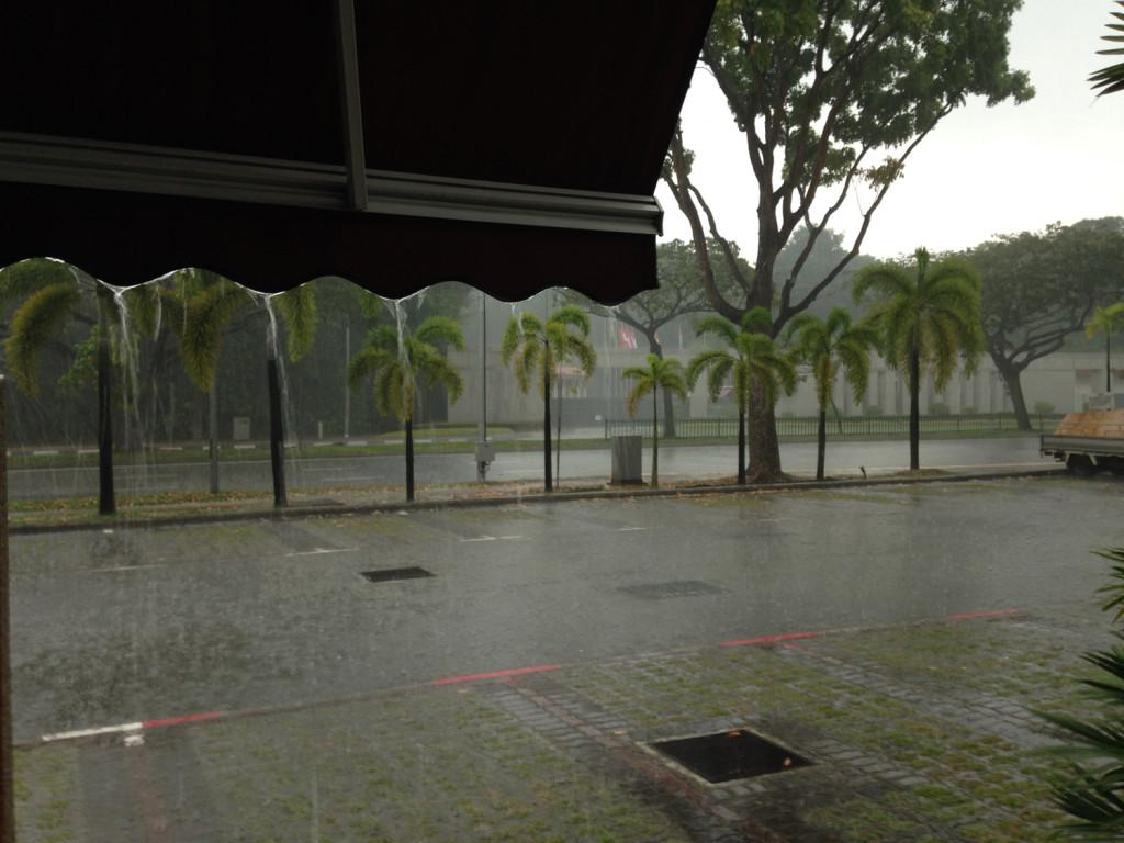 bild-monsunregen-2