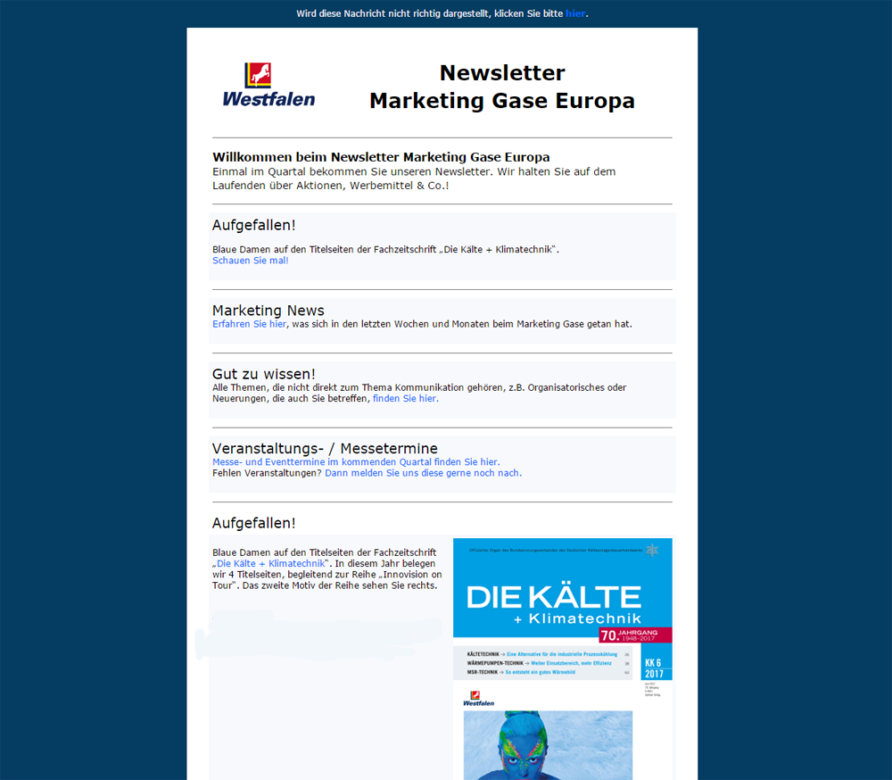 Screenshot unseres Newsletters